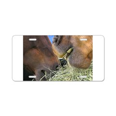 Two Brown Horses Chow Down Aluminum License Plate