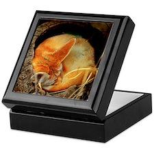 Fennec Keepsake Box