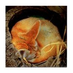 Fenec Fox Tile Coaster