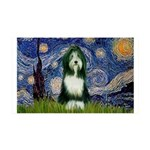 Starry Night /Bearded Collie 35x21 Wall Decal
