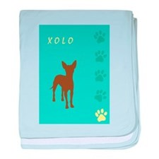 xoloitzcuintli paws baby blanket