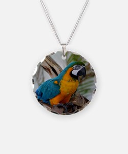 Cute Blue and gold macaw Necklace