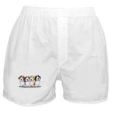 Four PBGV Boxer Shorts