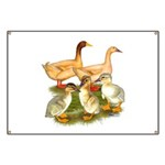 Buff Duck Family Banner