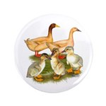 "Buff Duck Family 3.5"" Button (100 pack)"