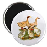 "Buff Duck Family 2.25"" Magnet (10 pack)"