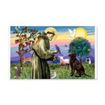 St Francis Chocolate Lab 22x14 Wall Peel