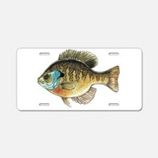 Bluegill Bream Fishing Aluminum License Plate