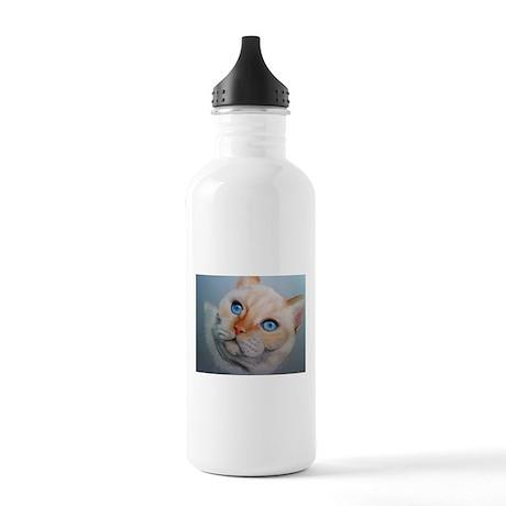 Aniksi Stainless Water Bottle 1.0L