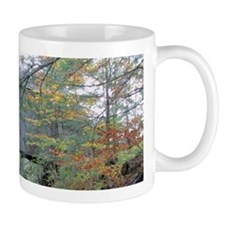 Cute Catskills Mug