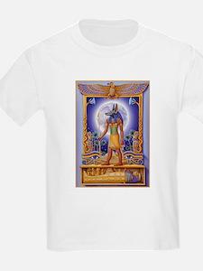 Image41bv T-Shirt