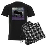 Baron Men's Dark Pajamas