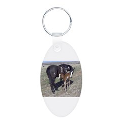 Paints and Pintos Aluminum Oval Keychain