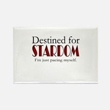 Destined for Stardom Rectangle Magnet
