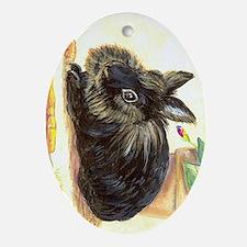 Lionhead rabbit Ornament (Oval)