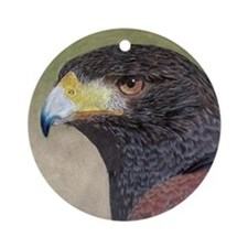 Harris Hawk Ornament (Round)