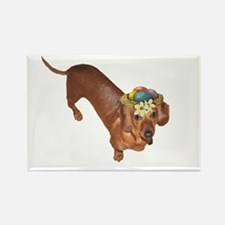 Tiger Dachshunds Dogs Nest Eggs Hat Rectangle Magn