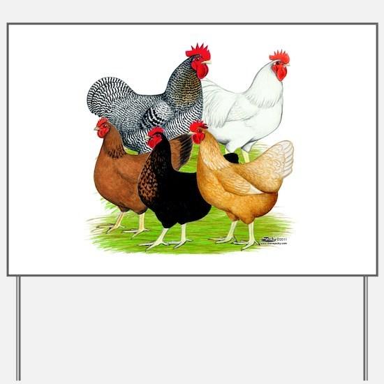 Sex-link Chicken Quintet Yard Sign