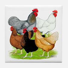 Sex-link Chicken Quintet Tile Coaster