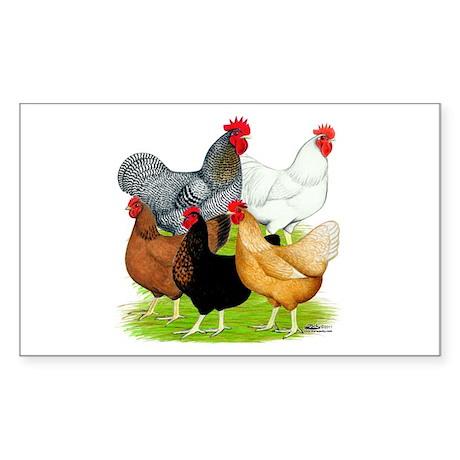 Sex-link Chicken Quintet Sticker (Rectangle)