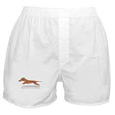 Dachshund Dad Funny Boxer Shorts
