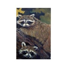 Two Raccoons Rectangle Magnet