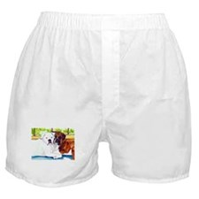 Krypta and Abbott Boxer Shorts
