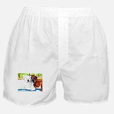 Krypta and Abbott Boxer Shorts
