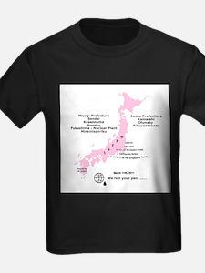Japan 3/11/2011 T