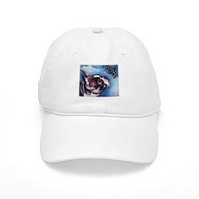 Boston Terrier and Dragonfly Baseball Cap