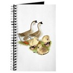 Buff African Goose Family Journal