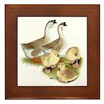 Buff African Goose Family Framed Tile