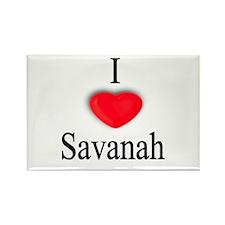 Savanah Rectangle Magnet