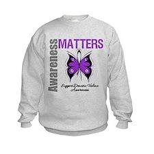 Domestic Violence Butterfly Sweatshirt