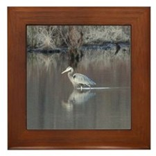 Great Blue Heron Wading Framed Tile