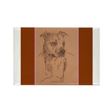 American Pit Bull Terrier Rectangle Magnet