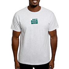 Exit 142A, Maplewood, NJ Ash Grey T-Shirt