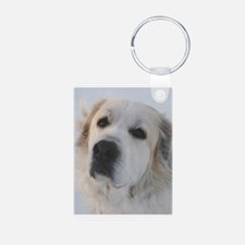 Cute Pyr Aluminum Photo Keychain