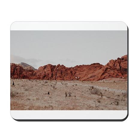 Kodachrome 1935-2010 iPhone 4 Slider Case