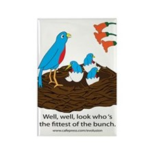 Fittest Bird in the Nest Rectangle Magnet