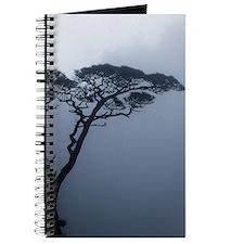JAPANRELIEF2011 : Bonsai Journal