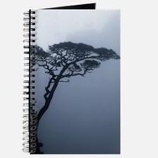 JAPANRELIEF2011 : Bonsai Journal
