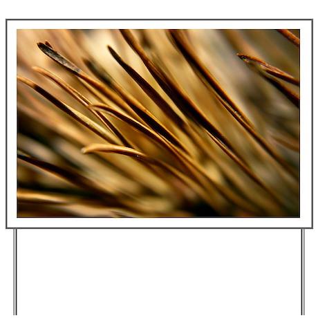 Dry Pine needles macro Yard Sign