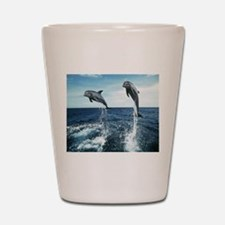 Dolphins In The Ocean Shot Glass
