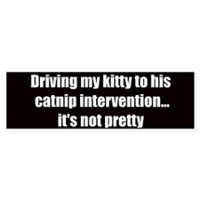 Catnip intervention (Bumper Sticker)