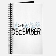 Due in December - Snow Baby Journal