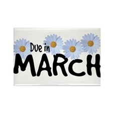 Due in March - Daisies Rectangle Magnet