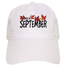 Due in September - Leaves Baseball Cap
