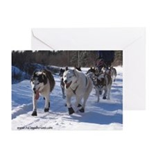 MCK Racing Siberians Greeting Cards (Pk of 10