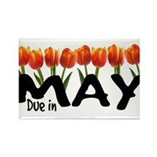 Due in May - Tulips Rectangle Magnet